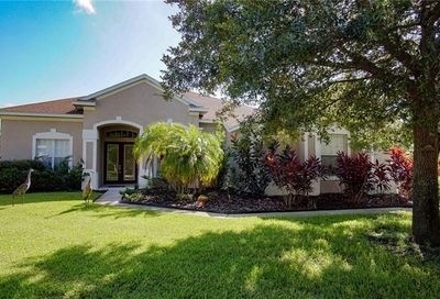 4209 Winding Vine Court Brandon FL 33511