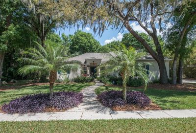 6204 Kingbird Manor Drive Lithia FL 33547