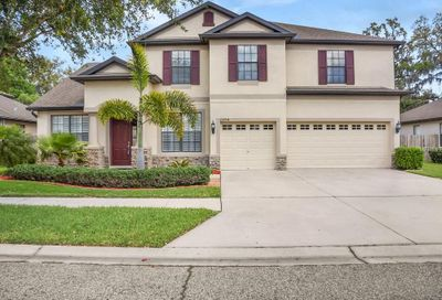12704 Charity Hill Court Riverview FL 33569