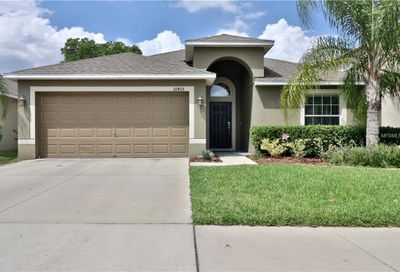 10405 White Peacock Place Riverview FL 33578