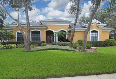 5716 Ternwater Place Lithia FL 33547