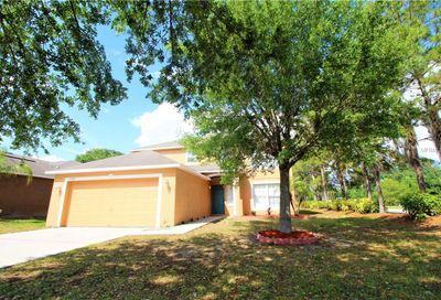 13520 Small Mouth Way Riverview FL 33569