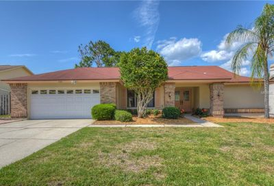 509 Humphries Road Safety Harbor FL 34695