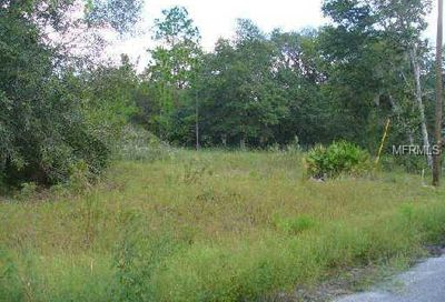 Fisher Way Trail Weirsdale FL 32195