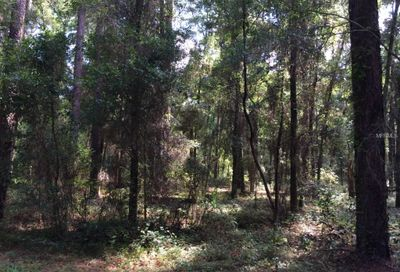 Lot 1 Taylor Woods Deland FL 32724