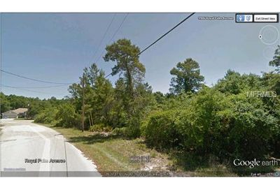 Royal Palm Avenue New Port Richey FL 34654