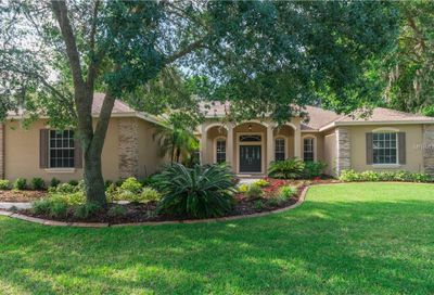 6311 Wild Orchid Drive Lithia FL 33547