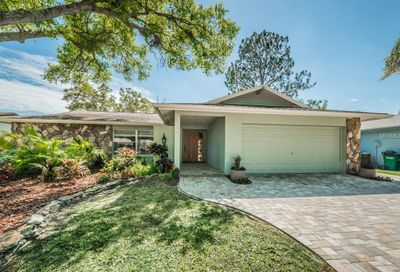 1119 Pelican Place Safety Harbor FL 34695