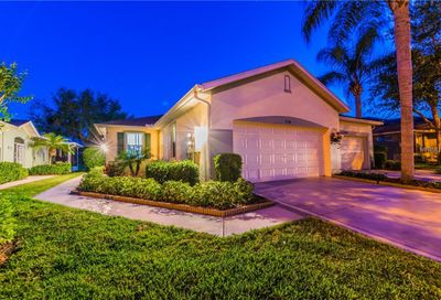 2138 Acadia Greens Drive Sun City Center FL 33573