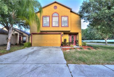 6226 Gassino Place Riverview FL 33578