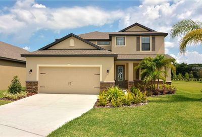11918 Winterset Cove Drive Riverview FL 33579