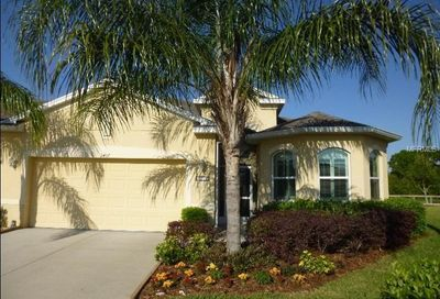 2407 Richmond Greens Court Sun City Center FL 33573