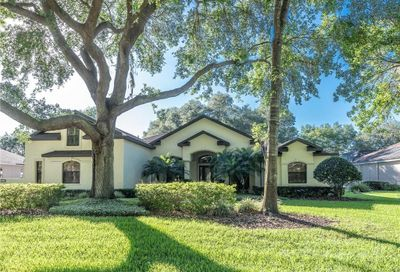 6231 Kingbird Manor Drive Lithia FL 33547