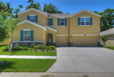 10405 Pleasant Spring Way Riverview FL 33578