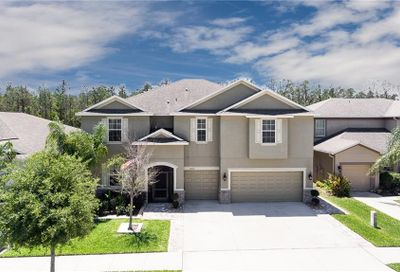 12107 Streambed Drive Riverview FL 33579