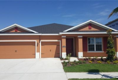 12206 Angel Mist Place Riverview FL 33579