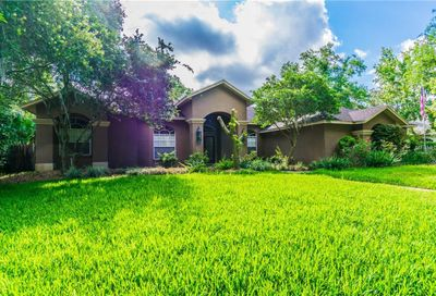 17209 Tiffany Shore Drive Lutz FL 33549