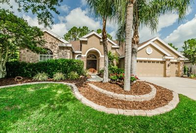 4608 Ayron Terrace Palm Harbor FL 34685