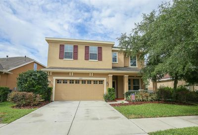 15903 Oakleaf Run Drive Lithia FL 33547