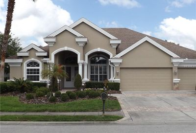 1434 Parilla Circle Trinity FL 34655