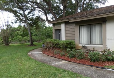 1700 Cypress Trace Drive Safety Harbor FL 34695