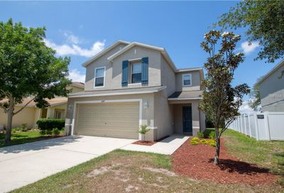 11214 Silver Fern Way Riverview FL 33569