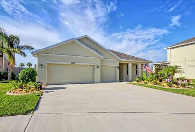 11917 Quack Grass Court Riverview FL 33579