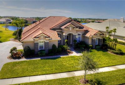11816 Shire Wycliffe Court Tampa FL 33626