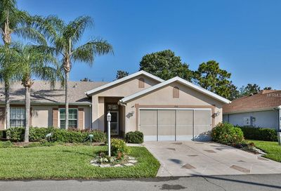 934 Villeroy Greens Drive Sun City Center FL 33573