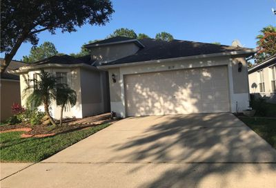 8119 Moccasin Trail Drive Riverview FL 33578