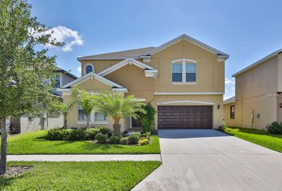 12304 Ballentrae Forest Drive Riverview FL 33579