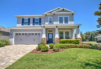 15906 Starling Crossing Drive Lithia FL 33547