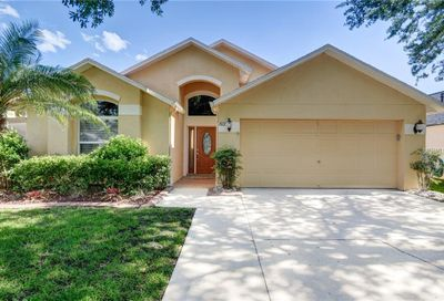 10123 Somersby Drive Riverview FL 33578