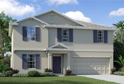 10261 Strawberry Tetra Drive Riverview FL 33578