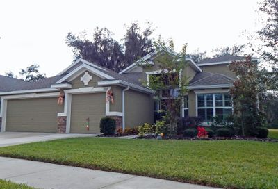 15719 Starling Water Drive Lithia FL 33547