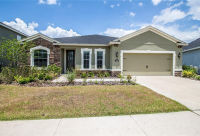 11038 Spring Point Circle Riverview FL 33579