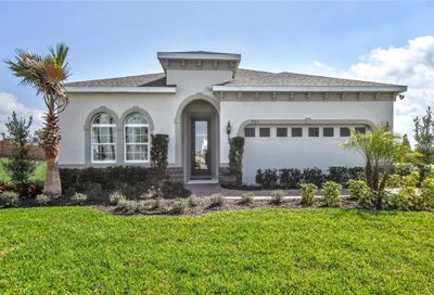 12011 Grand Kempston Drive Gibsonton FL 33534