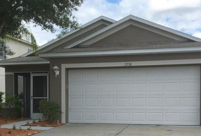 7730 Carriage Pointe Drive Gibsonton FL 33534