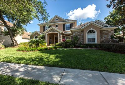 15510 Avocetview Court Lithia FL 33547