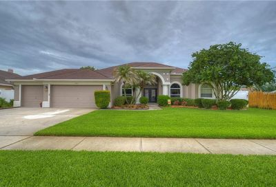2843 Mossy Timber Trail Valrico FL 33596