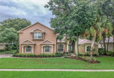 6232 Kingbird Manor Drive Lithia FL 33547
