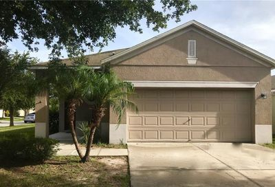 8560 Deer Chase Drive Riverview FL 33578