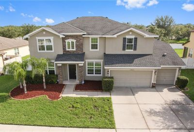 11835 Newberry Grove Loop Riverview FL 33579