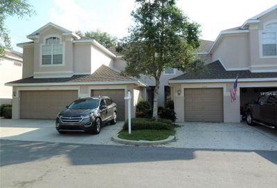3646 Country Pointe Place Palm Harbor FL 34684