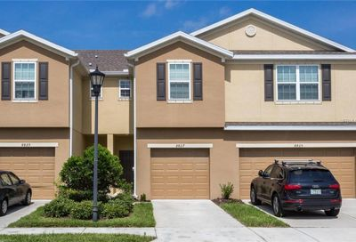 8827 Turnstone Haven Place Tampa FL 33619