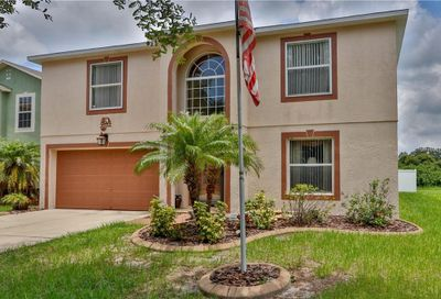 10310 River Bream Drive Riverview FL 33569