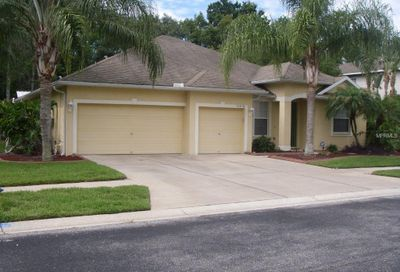 21434 Preservation Drive Land O Lakes FL 34638