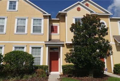 6943 Towering Spruce Drive Riverview FL 33578