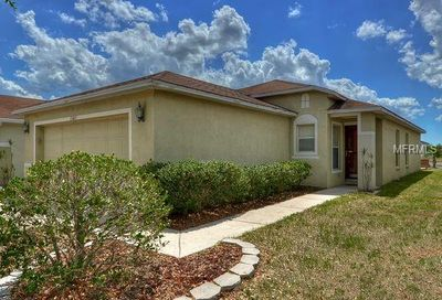 11045 N Golden Silence Drive N Riverview FL 33579