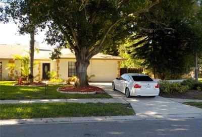 2000 Saginaw Court Oldsmar FL 34677
